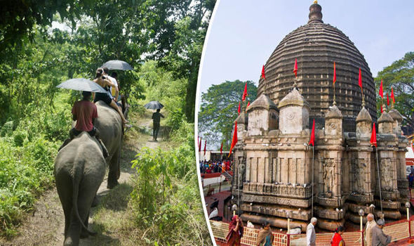 India: Discover Exotic Wildlife In Remote Assam On A Luxurious River Cruise