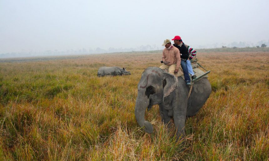 Cruising The Brahmaputra River, India