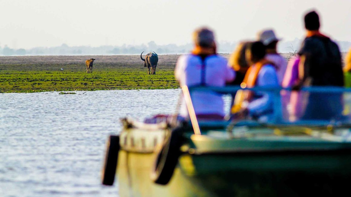 Boat safari in Kaziranga