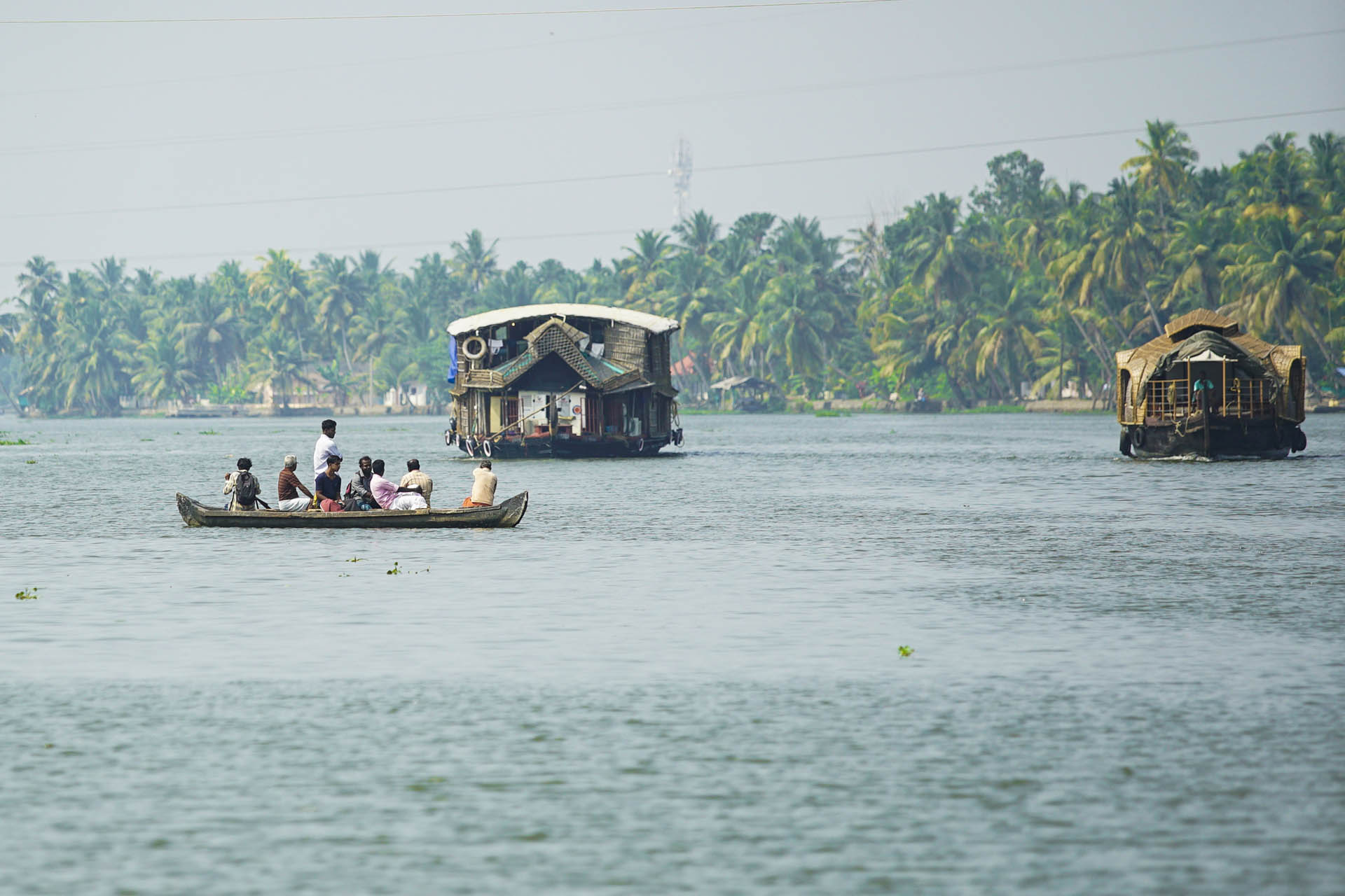 Cruising on Backwaters, Kerala