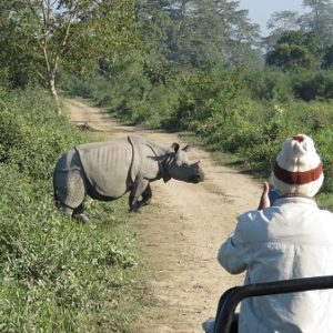 The Best Safari Experience In India