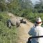 The One-Horned Rhino – The Pride Of Kaziranga