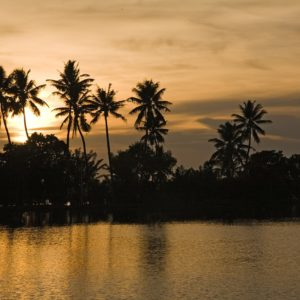 Seven Unique Experiences You Can Have in Kerala
